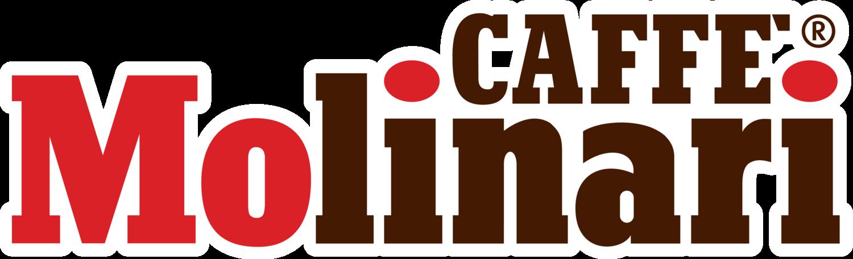 INFUSO MOLINARI AI FRUTTI - FIORI DI IBISCO, ROSA CANINA, COCCOLE DI SAMBUCO - Box 25 CIALDE ESE44 da 2.6g